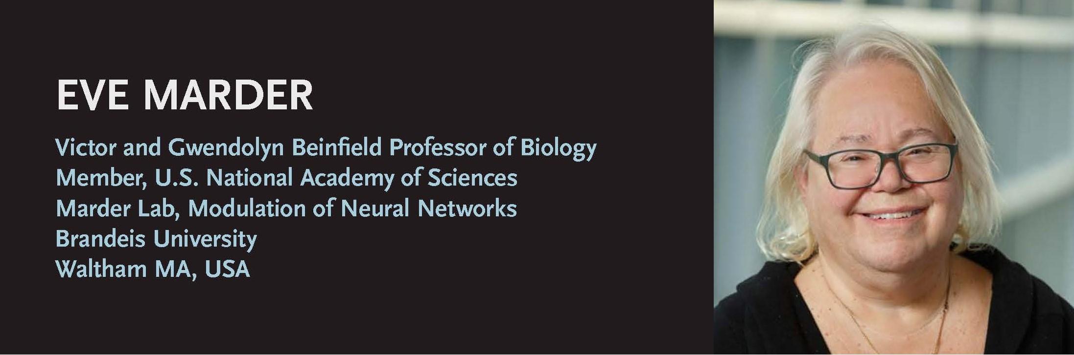 https://www.sfb1315.de/wp-content/uploads/2021/01/SFB-lecture-series-Marder-.jpg